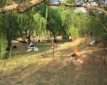 Corporate team building South Africa